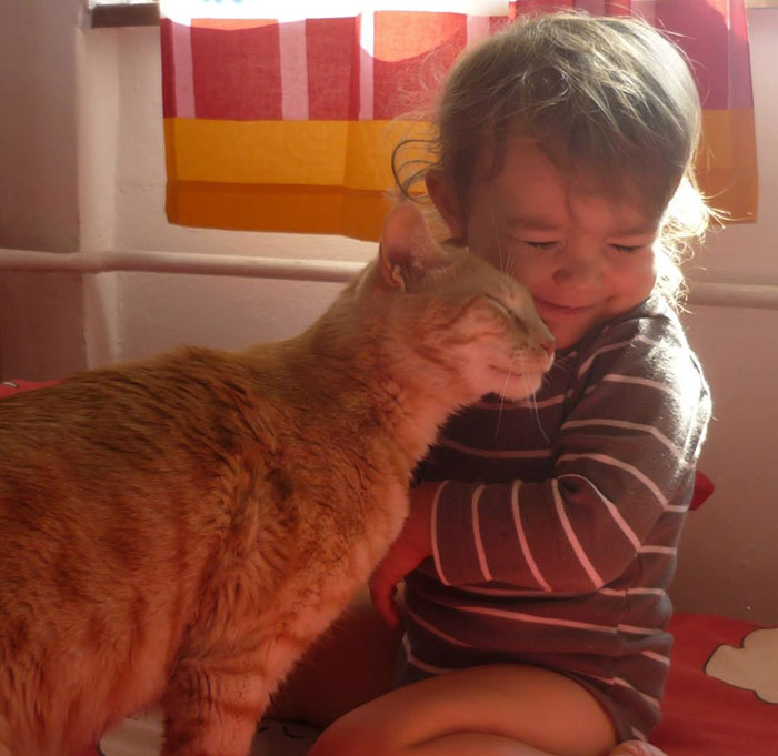 Calin bebe et chat